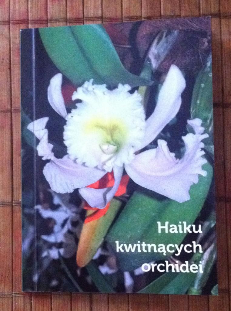 Haiku kwitnących orchidei